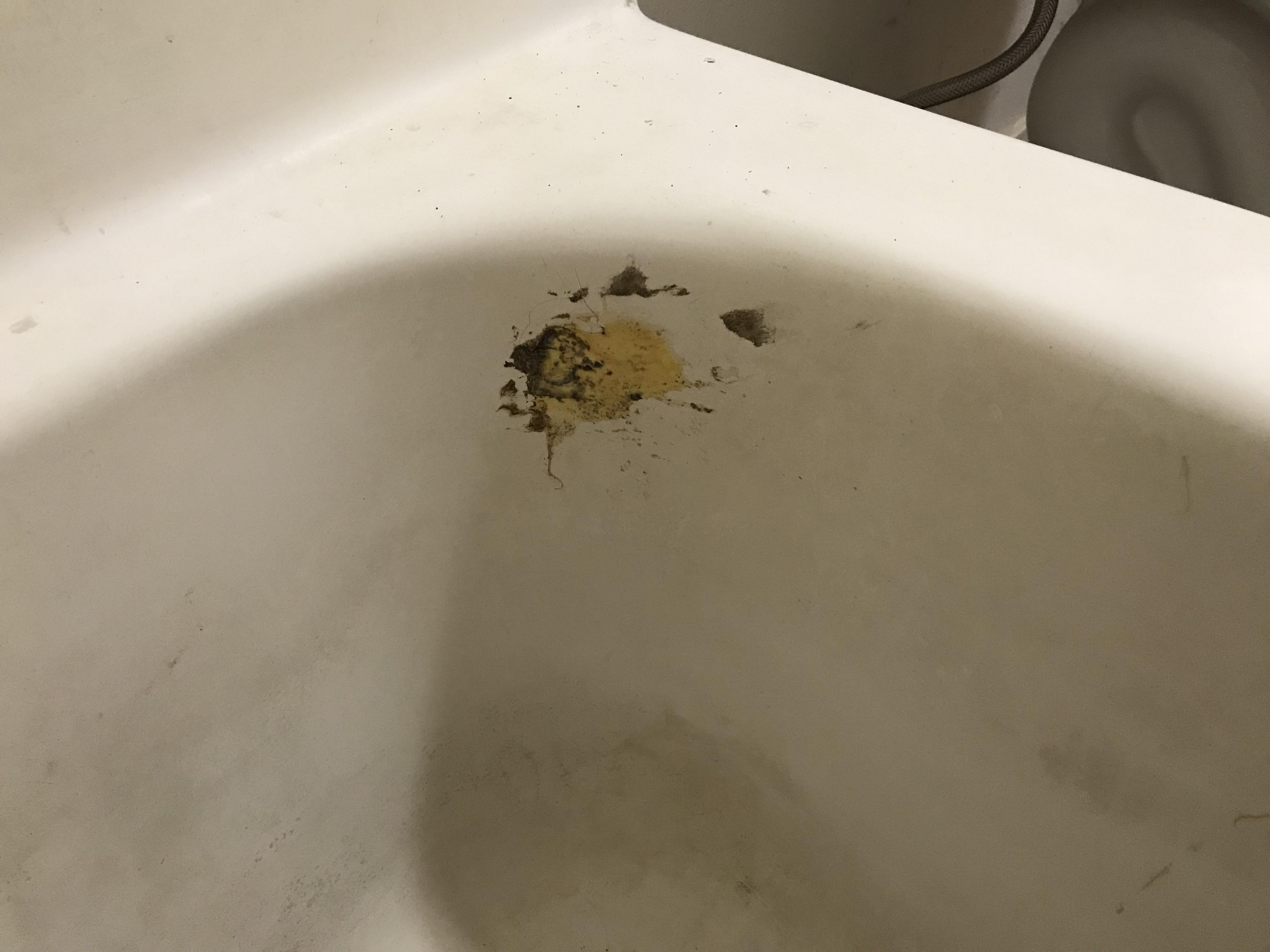Bathtub Refinishing Before Spot Repair - NuFinishPro